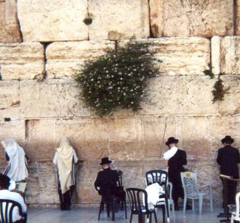 Wailing Wall Prayers